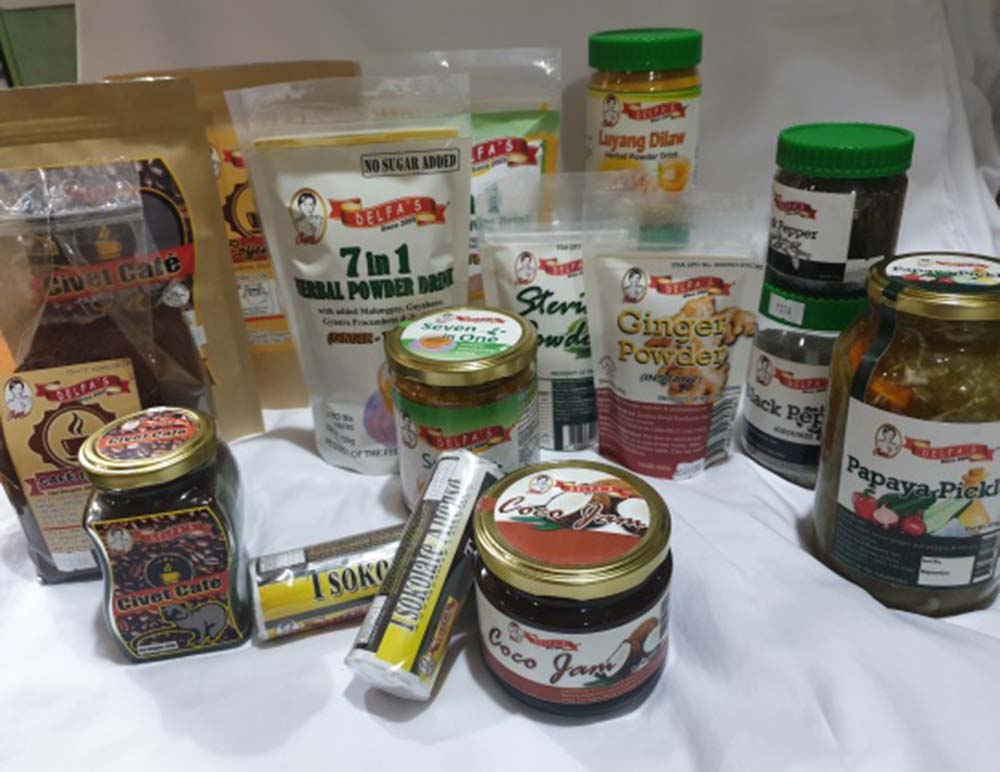 Delfas Food Products Inc
