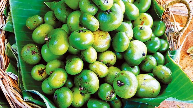 Batwan, main souring ingredient in the Visayas